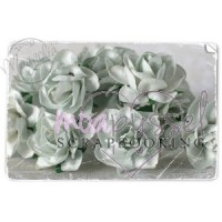 Magnolia - Vintage Light Blue Rose -Large-