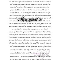 Clear stamp set - Sweet Dixie - Love Story Script
