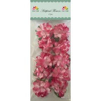 Dixi Craft - Artificial Flowers - Tvåfärgade - AF023